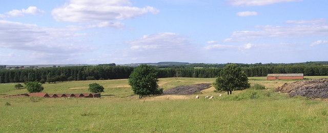 Westwick Moor