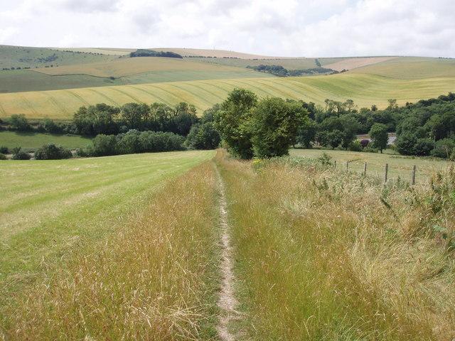 South Downs way; Long Hill