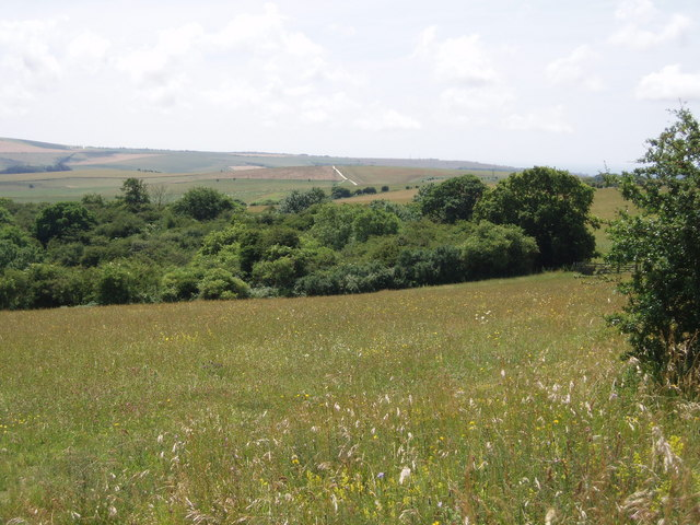 Ashcombe Bottom