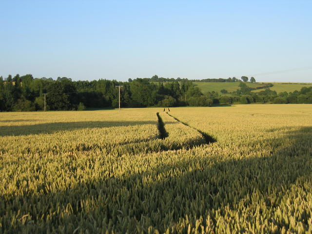 View from the footpath to Mollington
