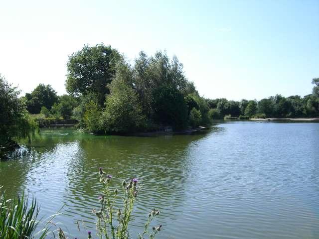 Moreton Fisheries, Main Lake