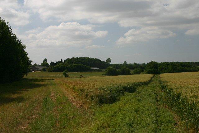 Footpath to Kirtling