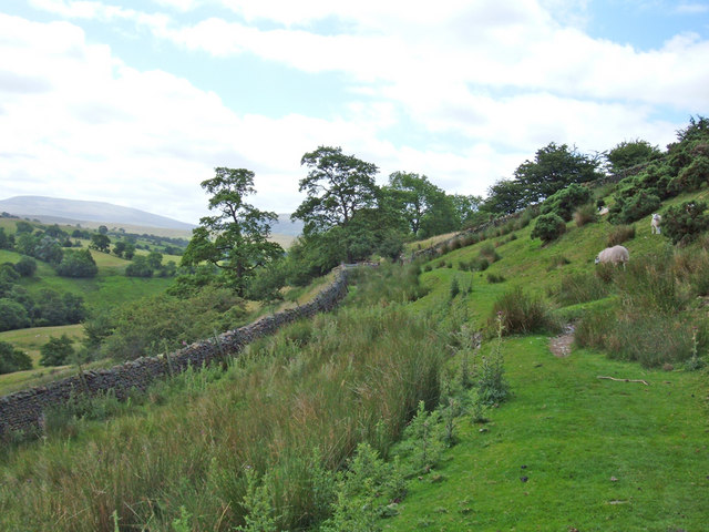 Bridleway in the Rawthey valley