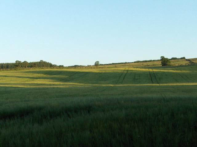 Farmland, Mill of Drummond