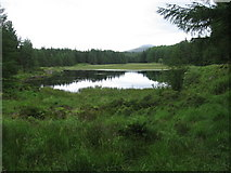 NX4493 : Loch Gower by Chris Wimbush