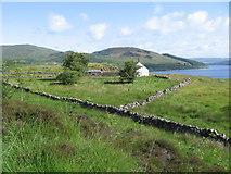 NX4893 : Starr by Loch Doon by Chris Wimbush