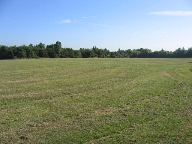 Pelaw Fields East