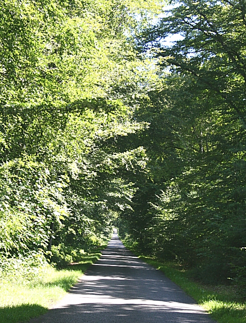 Road at Pitgaveny