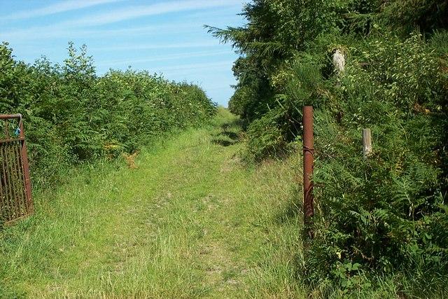 Footpath Southeast of Eglwysbach