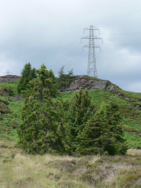 Electricity pylon near Loch Ordie