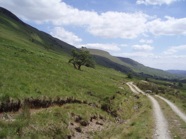Hillside below Ben Vane