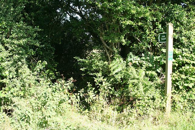 Hittisleigh: footpath to Crayford