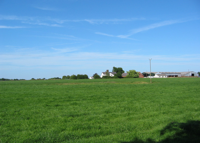 Cattle pasture and Chorley Green Farm
