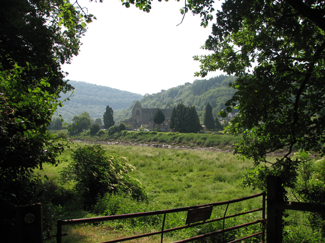 Tintern Abbey from the Gloucestershire bank