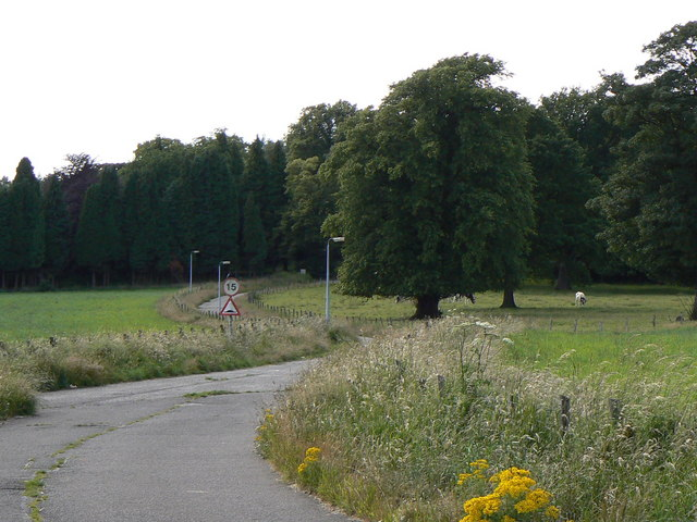 Trees round Larbert House