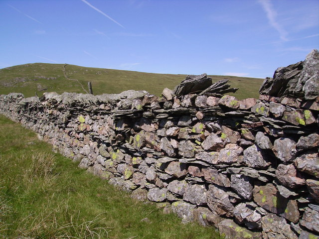 Wall. Little Yarlside