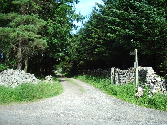 The Road to Reagill Grange