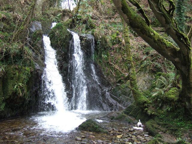Waterfall,  Aberfforest
