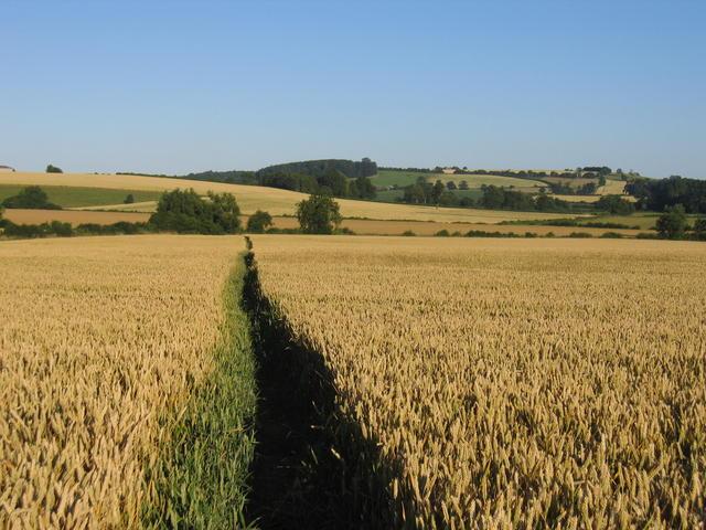 Footpath to Wardington