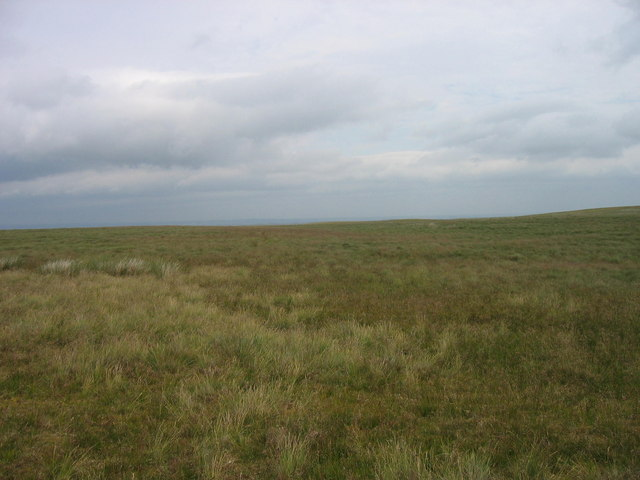 Moorland between Allendale and Carrshield