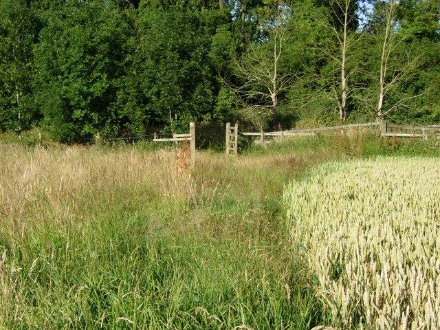 Bridleway near Gumley