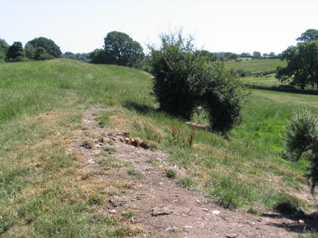 Wat's Dyke near Northop