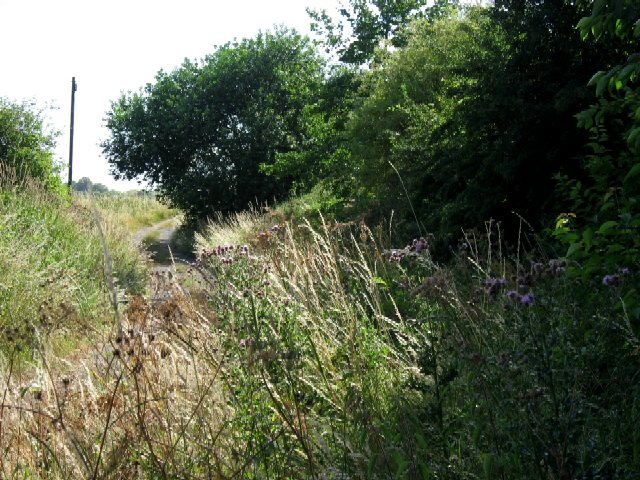 The Trans-Pennine Trail At Kilpin Pike