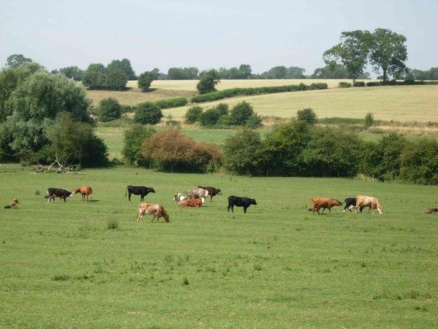 Farmland near North Kilworth