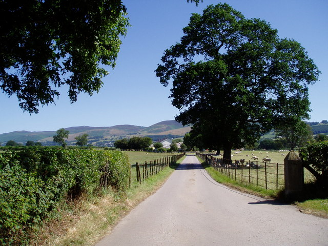 Road to Merllyn