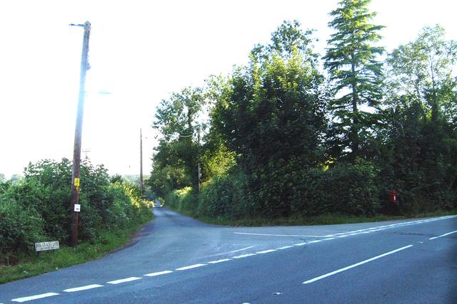 Miss Grace's Lane