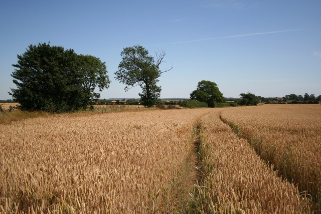 View from Wooden Lane