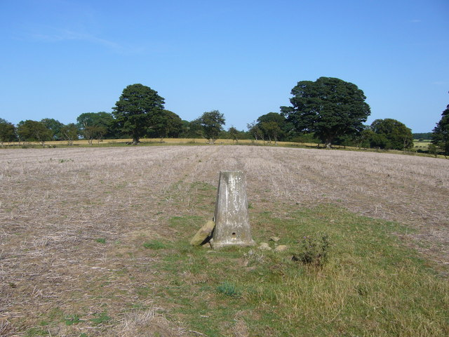 Broom Hill trig