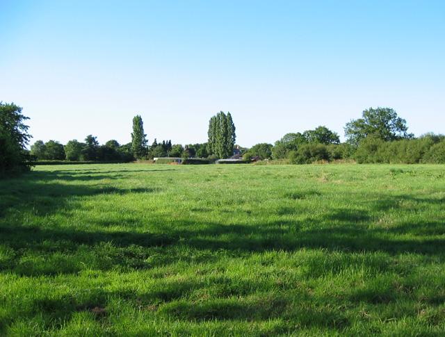 Cattle pasture at Larden Green Farm