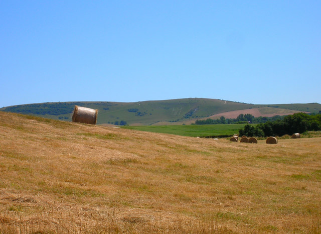 Farmland near Arlington