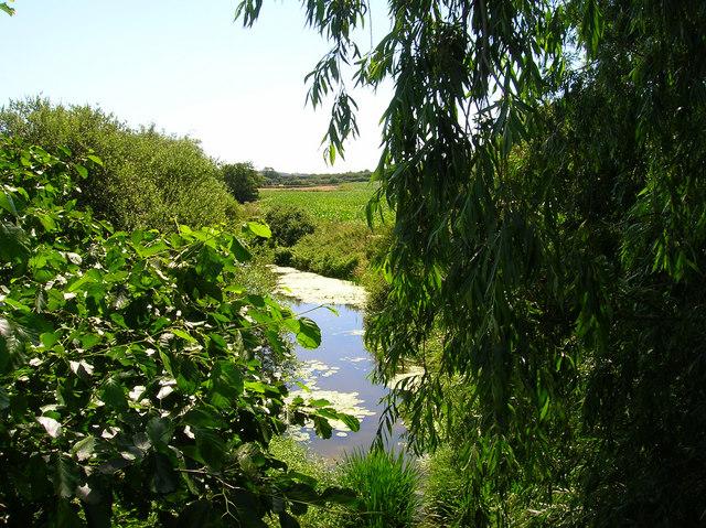 River Cuckmere