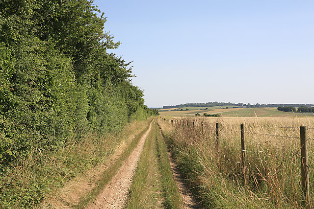 Byway on Whitsbury Down