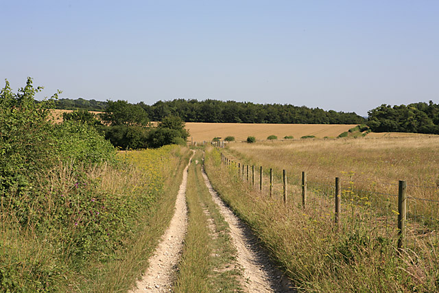 Descending byway on Whitsbury Down towards Breamore Down