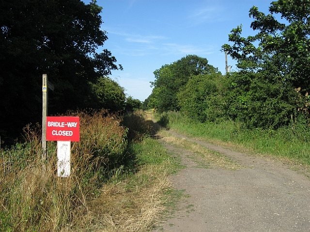 The Bridleway to Skelton Common
