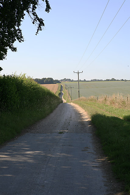 Looking along byway on Whitsbury Down towards Round Clump
