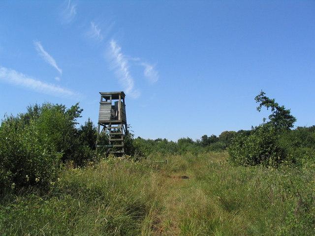 Fire tower, Careby Wood