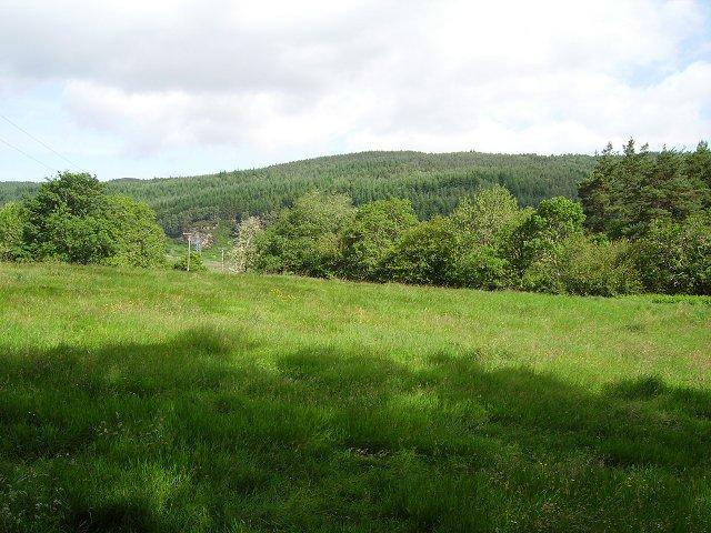 Hay meadow, near Obari Cottage, Strathconon