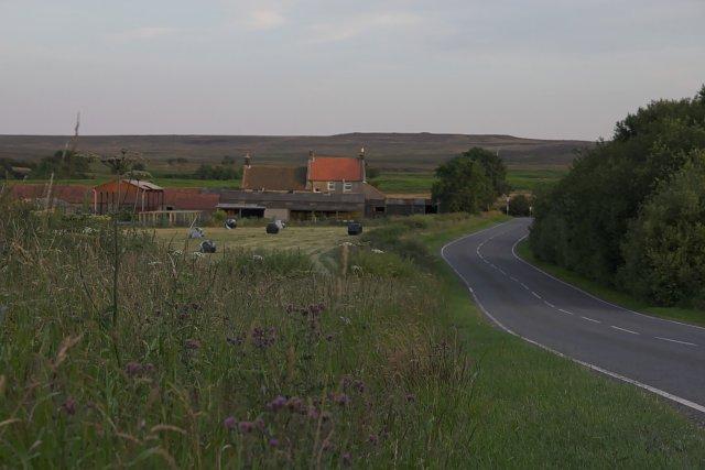 Farm by the A171 at Waupley Bridge