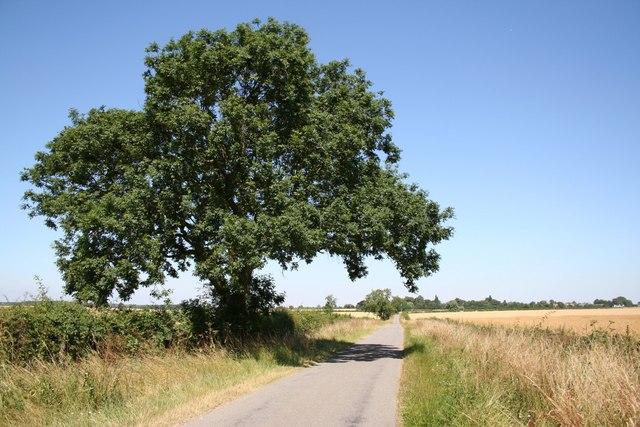 Marton Road