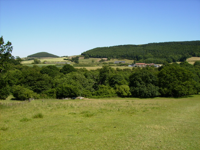 View towards Whorl Hill Wood