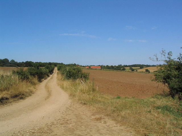 View to Elderwood Cottage