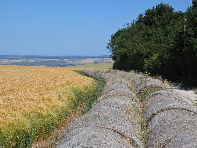 Farmland at SE895700