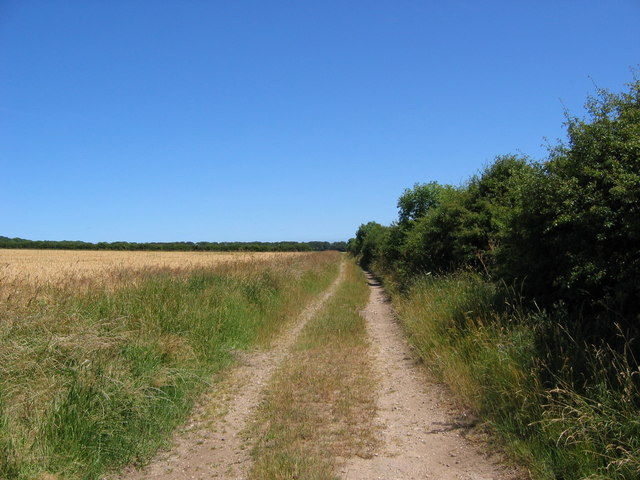Track North of Wold Newton