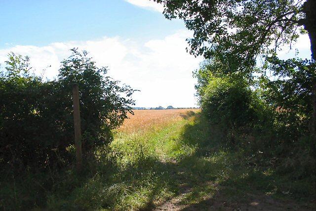 Footpath at Assington Green