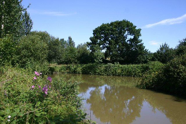 Fishpond at Swan's Hall Farm