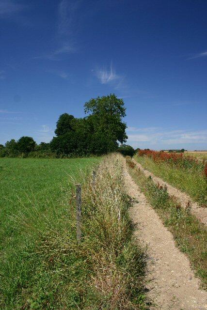 Footpath to Gosland Green